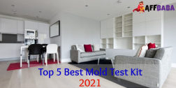 Top 5 Best Mold Test Kit 2021 | Reviews and Buying Guide